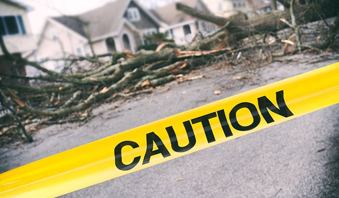 How Can I Protect My Family from Storm and Wind Damage?